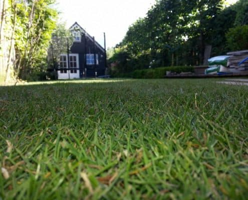 Tuinproject door Snijers tuinen in Oudenkerk aan de Amstel